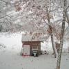 とうとう根雪がやって来た:開拓生活研究所ブログ