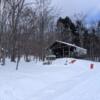 阿寒の森の雪景色:開拓生活研究所ブログ